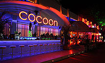 "Disco Lounge Bar & Sushi ""COCOON"" Sunny Beach"